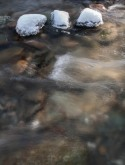 Three snow-capped stones in Fargo Brook.