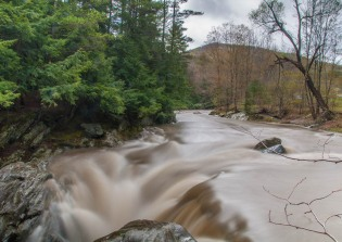 Chocolate cream river: the rain-swollen Huntington River yesterday just before it drops into the Gorge.