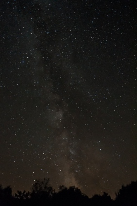 "Last night's clear skies offered a great opportunity to take shots of the Milky Way. In this view, looking south from our front field, you can make out the ""Tea Pot"" of Sagittarius just above the trees."