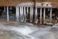 Long, bulbous icicles form beneath our old bridge down Fargo Brook.