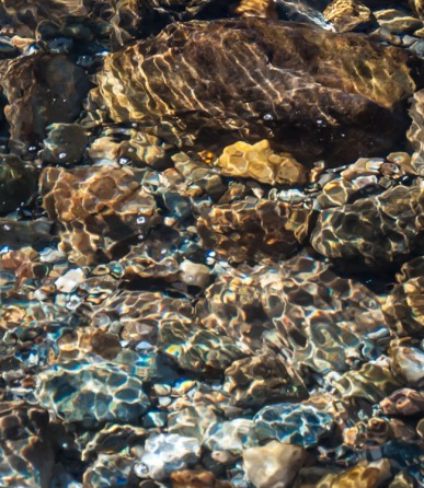 Dappled sunlight paints the rocks and pebbles on the bed of Fargo Brook yesterday.