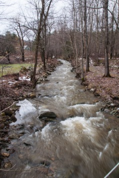 Fargo Brook running fast and muddy yesterday afternoon.