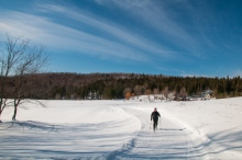 Robin enjoying a sunny morning ski in the Windekind Farm field up at the Camel's Hump Nordic Ski Center yesterday.