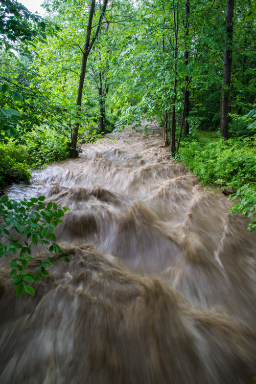 """Fargo Brook rages shortly after the rains--about 1.25"""" in 30 minutes--let up briefly yesterday afternoon."""