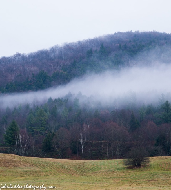 Low clouds on a late fall hillside