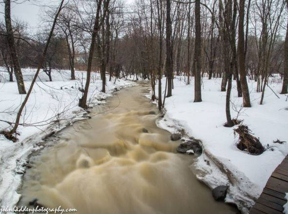 Fargo Brook was running full yesterday morning