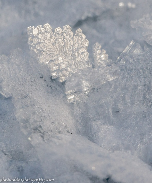 A close-up shot of hoarfrost crystals on the pond