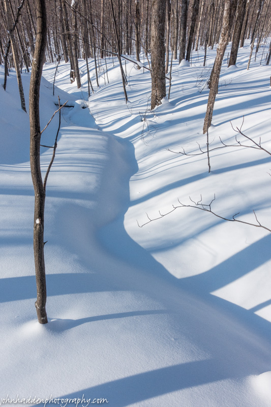 Shadows bend and tuck across a snow covered stream
