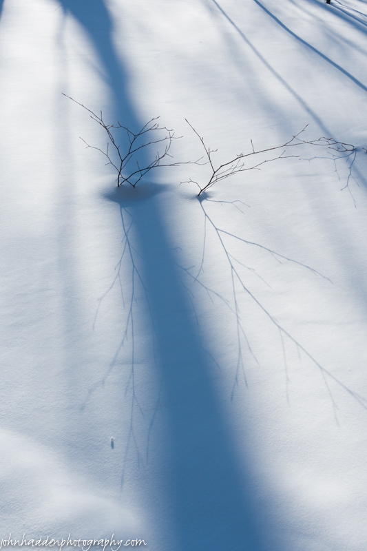 More shadows on snow...