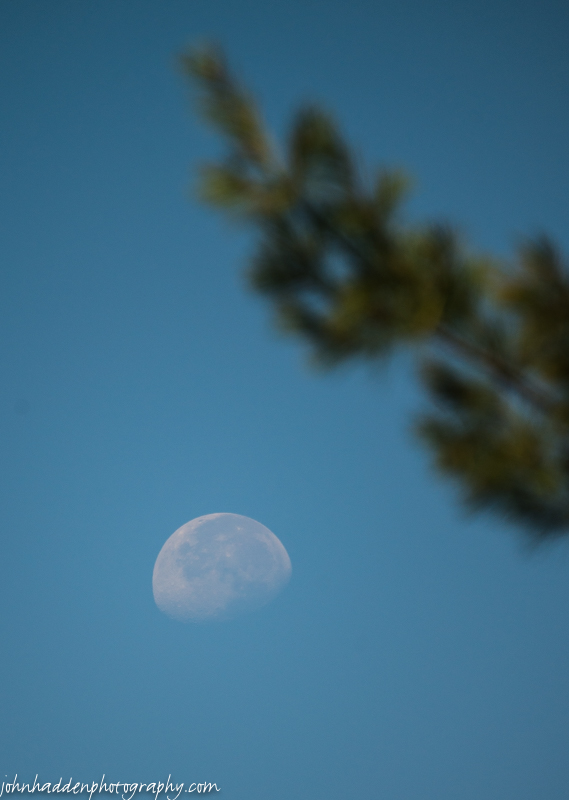 A waning gibbous moon in a clear morning sky