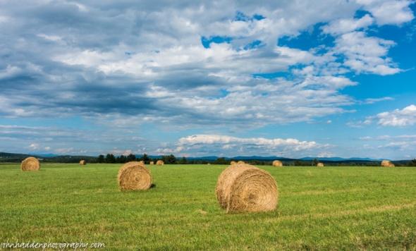 Fresh cut round bales in Orwell, VT