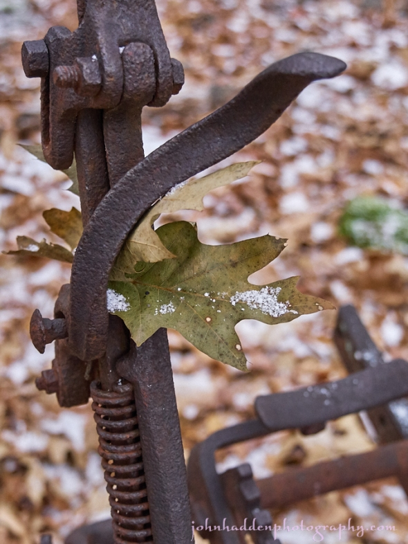 oak-leaf-rusty-planter