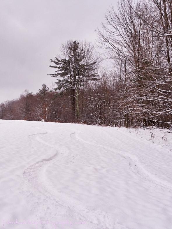 ski-tracks