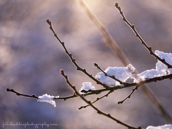 snowy-stick