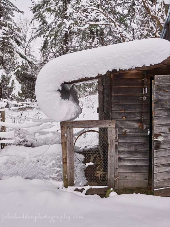 snow-curl-roof
