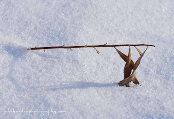 steeple-snow