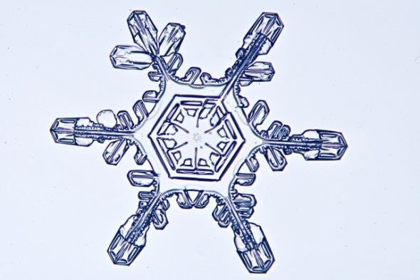 garys-snowflake